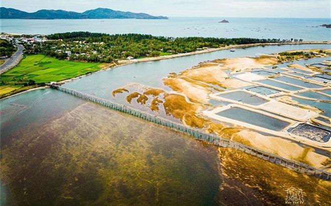"""Check-in cây cầu gỗ dài nhất Việt Nam, ngắm vẻ mộc mạc ở xứ """"hoa vàng cỏ xanh"""""""