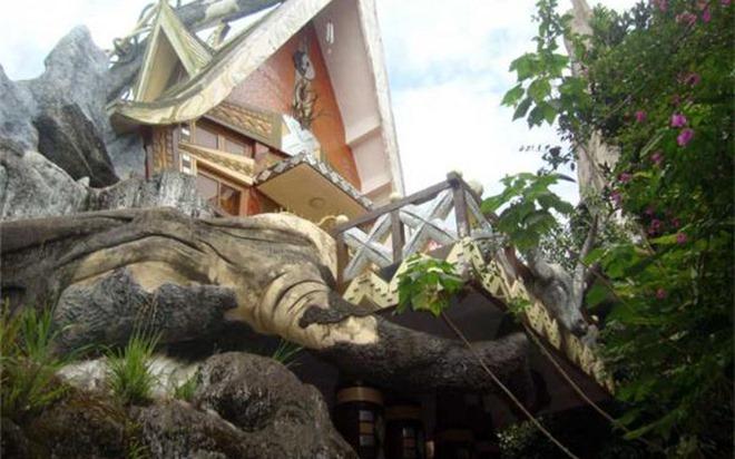 Những ngôi nhà kỳ dị trong rừng thông